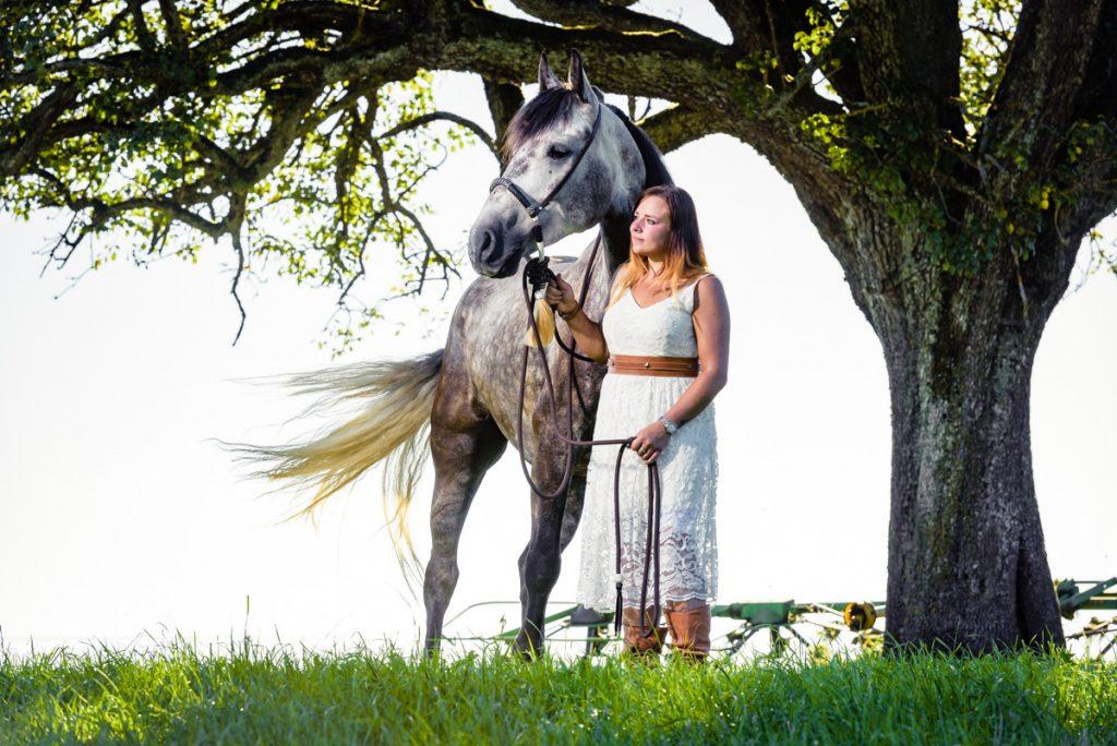 Tierfotograf Kempten edelformat Pferd Allgaeu